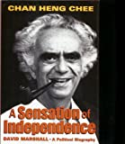 img - for A Sensation of Independence: A Political Biography book / textbook / text book