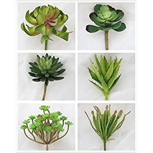 Lily Garden Set of 6 All Kinds of Green Artificial Succulent Plants 20