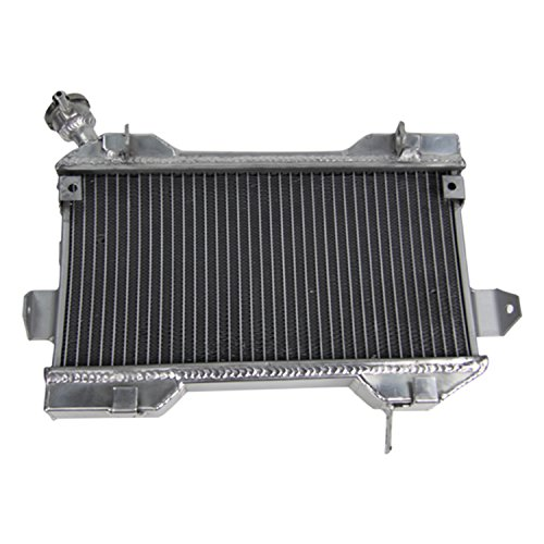 ALLOYWORKS 2 Row Aluminum ATV Radiator for Suzuki LTR450 LT450R