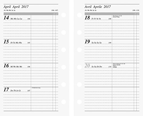 Rido/idé (706991717) Zeitplansysteme/Ringbuchkalender/Timer Wochenkalendarium für Timeplaner fun (76 x 127 mm, 2 Seiten = 1 Woche, Kalendarium 2017)