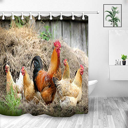 (NYMB Farm Animals Gallos Wallpaper Shower Curtains, Rooster Chicken in Haystack with Rustic Wooden Barn,Fabric Waterproof Shower Curtain, Bathroom Accessory Sets, Hooks Included, 70X70in)
