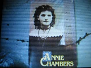 book cover of Annie Chambers