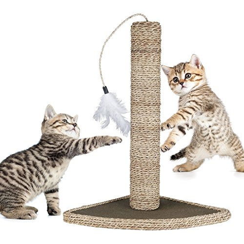 Mimibox Cats Toy - Cat Scratching Post Natural ...