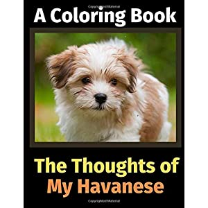 The Thoughts of My Havanese: A Coloring Book 28