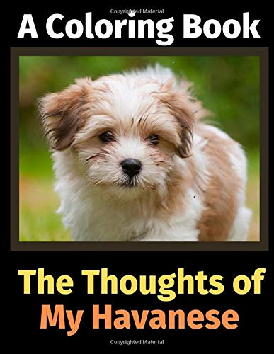 The Thoughts of My Havanese: A Coloring Book 1