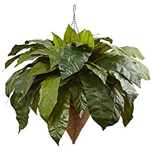 Nearly Natural Giant Birds Nest Fern 60