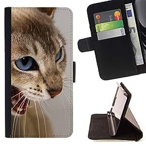 Momo Phone Case / Flip Funda de Cuero Case Cover - Cat Blue Eyes Marrón Blanco Enojado Dientes - HTC One M9