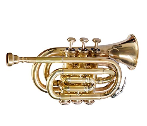 SC EXPORTS Pocket Trumpet with Carrying Case by SCEXPORTS (Image #3)