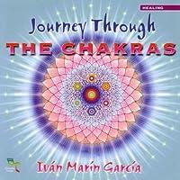 Journey Through The Chakr