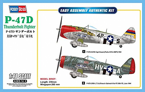 Thunderbolt Fighter P-47d (Hobby Boss Easy Assembly P-47D Thunderbolt Fighter Airplane Model Building Kit)