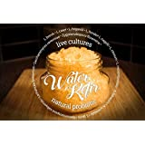 4 TABLESPOONS Original Water Kefir Grains Exclusively from Florida Sun Kefir with 4 Brewing Bags