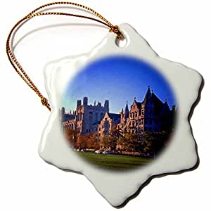 3dRose LLC orn_26371_1 University of Chicago Snowflake Porcelain Hanging Ornament, 3-Inch