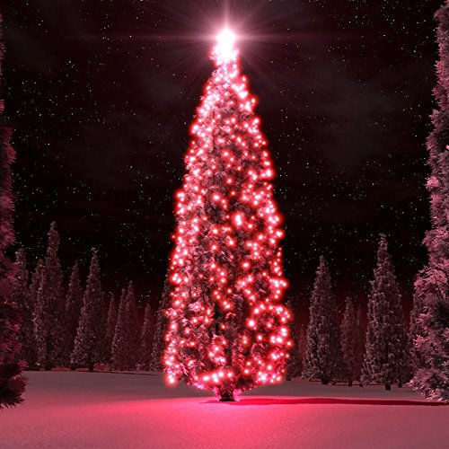 100 Red Led Christmas Lights in US - 6