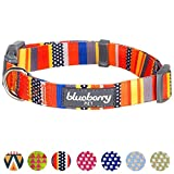 Blueberry Pet Nautical Flags Inspired Designer Basic Dog Collar, Neck 18'-26', Large, Collars for Dogs