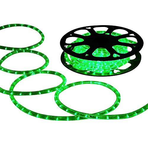 DELight 150 FT Green 2 Wire LED Rope Light Indoor Outdoor Home Holiday Valentines Party Restaurant Cafe Decoration ()