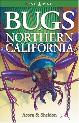 Bugs Of Northern California
