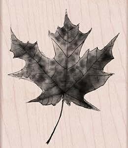 Hero Arts Lisa's Painted Maple Leaf Woodblock Stamp