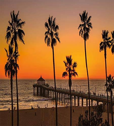 Buy the best beach in los angeles
