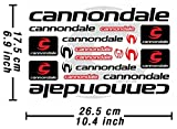 Cannondale Decals Stickers Bicycle Frame