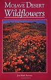 Search : Mojave Desert Wildflowers