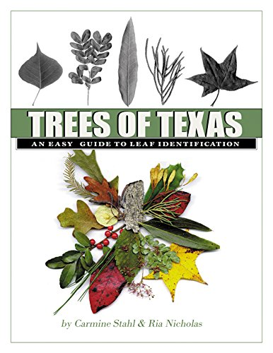 Trees of Texas: An Easy Guide to Leaf Identification (W. L. Moody Jr. Natural History Series) (Best Plants For South Texas)