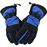 Simplicity® Men's Winter Waterproof Ski Gloves for Sports & Camping