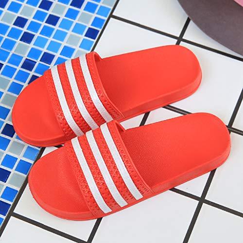 Interior Plásticas Red Chicas Baño Pareja Aminshap Inicio Sandalias Antideslizante Zapatillas qtxf8wZU