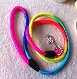 Traction Rope - Fashion 100pcs Rainbow Color Weave Nylon Belt Pet Dog Traction Rope Round Training Leashes - Large Label Training Pink Cesar Traction Leashes Handle