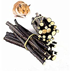 Hamster Molar Teeth Sticks Apple Branch Chew Toys for Guinea Pigs Chinchilla Squirrel Rabbits Parrot (500 g) by FMJI