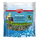 Kaytee Products C 529082 All Birds Chia/Sweet