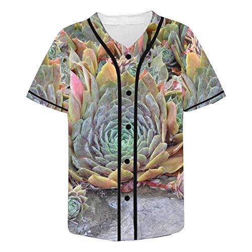 InterestPrint Men's Sedum Plants in The Garden Baseball Jersey Button Down T Shirts M
