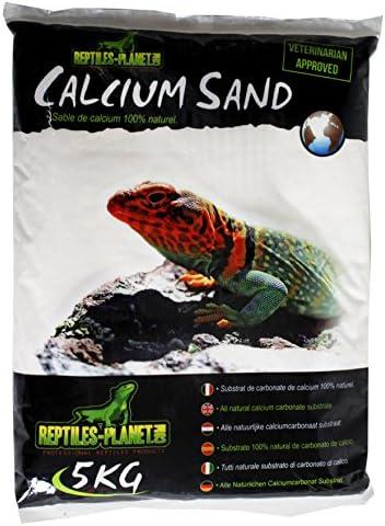Reptiles Planet 875820 - Arena de Calcio para terrario Sand Sahara Cream (5 kg)