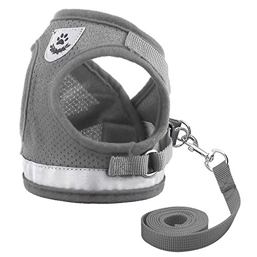 Didog Reflective Dog Cat Vest Harness and Leash Set for