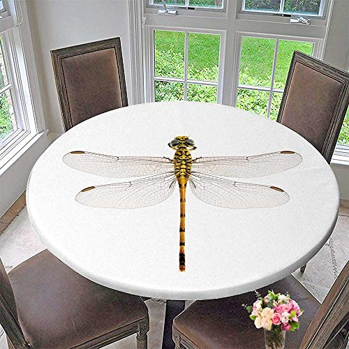 PINAFORE HOME Circular Table Cover Dragonfly onychogomphus lefebvrii Female on a White Background for Wedding/Banquet 55