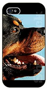 iPhone 4S Rottweiler face - black plastic case / dog, animals, dogs