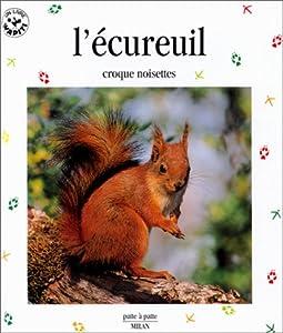 """Afficher """"L'écureuil, croque noisettes"""""""