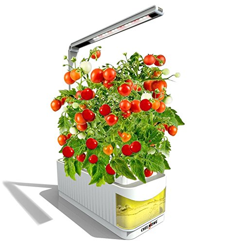 Indoor Hydroponic Herb Garden Light, Portable Fresh Herb Garden LED Growing System, Desk Reading Lamp Best Gifts for Mother, Father, Grandma (Seeds NOT Included) by CHEE MONG