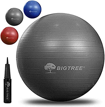 BIGTREE Balón de Ejercicio Anti-Burst para Yoga, Equilibrio, Fitness, Entrenamiento,55cm / 65cm / 75cm Fitness Yoga Ball