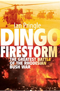 Battle on the lomba 1987 battle on the lomba 1987 kindle edition dingo firestorm the greatest battle of the rhodesian bush war fandeluxe Image collections