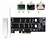 QNINE Dual M.2 PCIe Adapter, M2 SSD NVME (m Key) or SATA (b Key) 22110 2280 2260 2242 2230 to PCI-e 3.0 x 4 Host Controller Expansion Card with Low Profile Bracket for Desktop PCI Express Slot