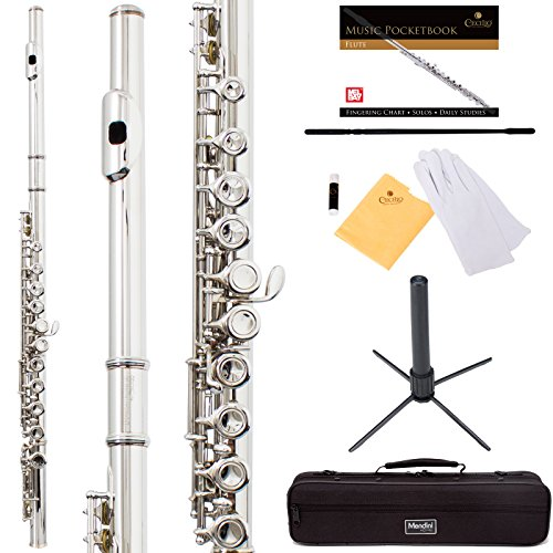 mendini-by-cecilio-premium-grade-closed-hole-c-flute-with-stand-book-deluxe-case-and-warranty-silver