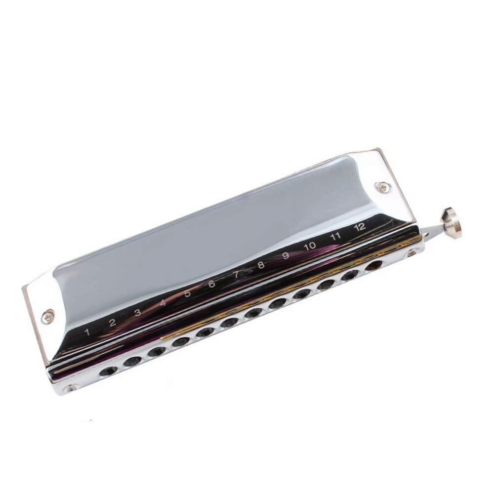 12-Hole Harmonica Adult Beginner Self-Study Professional Playing Harmonica