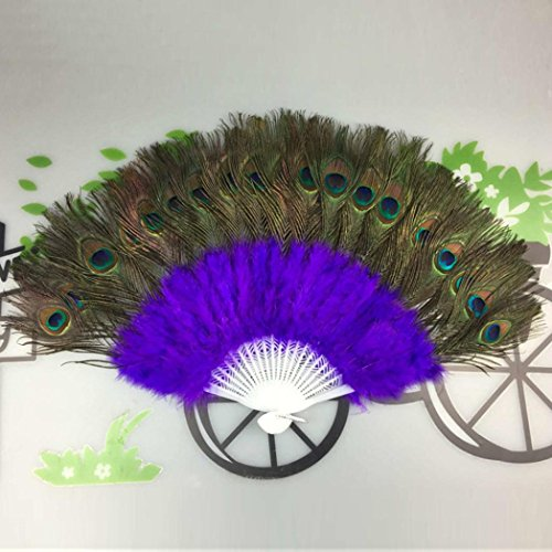 peacock feather hand fan - 1