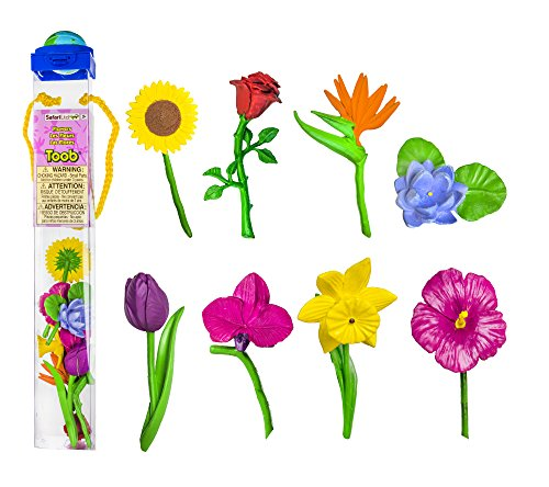 Safari Ltd  Flowers TOOB ()
