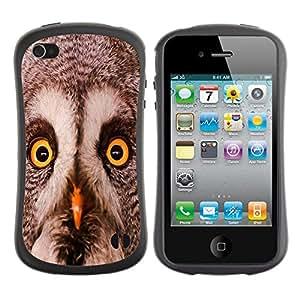 Paccase / Suave TPU GEL Caso Carcasa de Protección Funda para - Owl Winter Smart Animal Bird Nature - Apple Iphone 4 / 4S