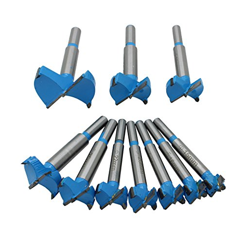 AUTOTOOLHOME 10 PACK Forstner Bit Set Woodworking Drill Bit for Door Window Hinge Hole Saw Wood Cutter ()