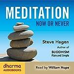 Meditation Now or Never | Steve Hagen