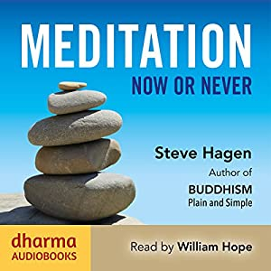 Meditation Now or Never Audiobook
