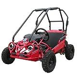 Fast Go Karts Best Deals - Adjustable Speed Control - Full Suspension - Fast GoKart INTERCEPTOR 163 XRS Kid Go Kart
