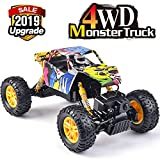 DOUBLE E RC Cars 1: 18 Dual Motors Rechargeable Remote Control Truck 4WD